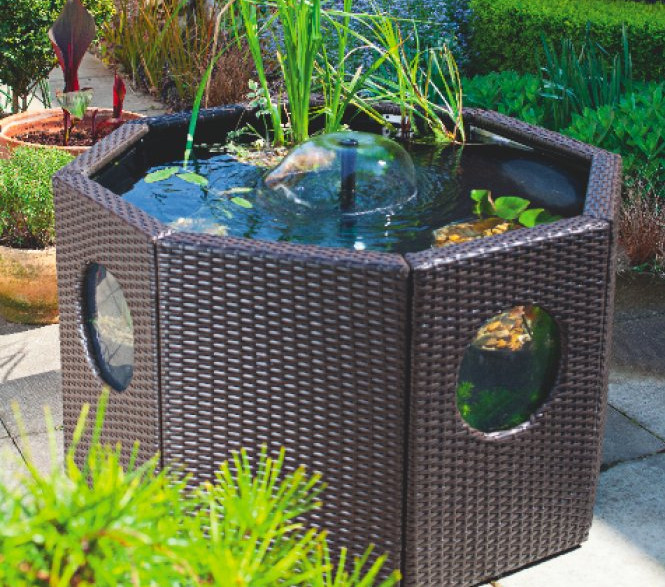 Above ground koi pond design images for Koi in above ground pool
