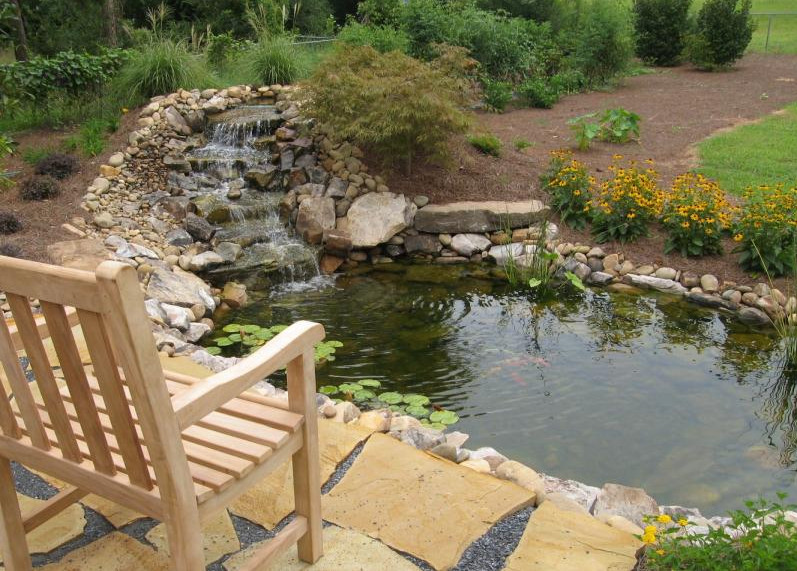 Backyard fish ponds pictures pool design ideas for Outside fish pond