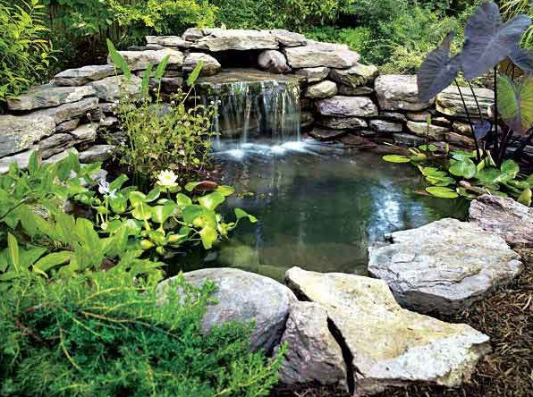 Backyard pond and waterfall ideas pool design ideas for Garden pond waterfall ideas