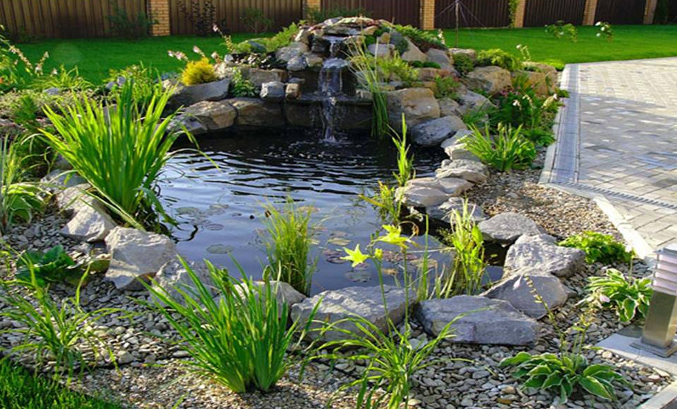 Backyard pond designs small pool design ideas for Modern koi pond ideas