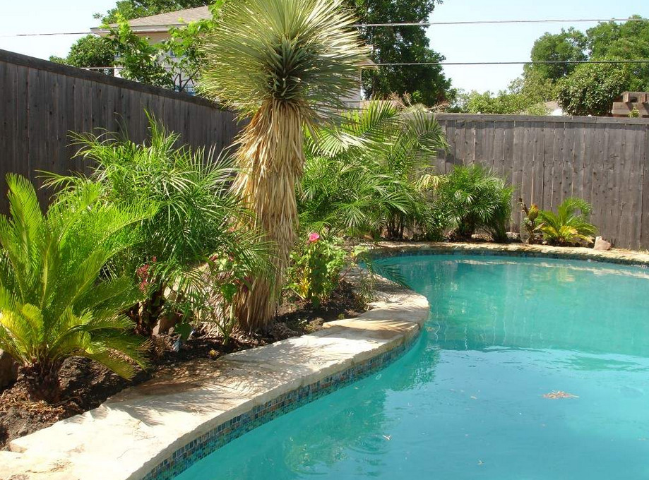 Charmant Backyard Swimming Pool Landscaping Ideas