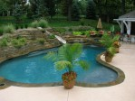 Backyard With Pool Design Ideas