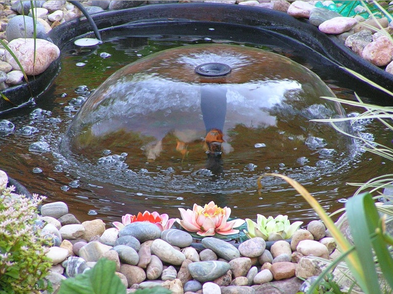 Decorative pond fountains pool design ideas for Decorative pond fish