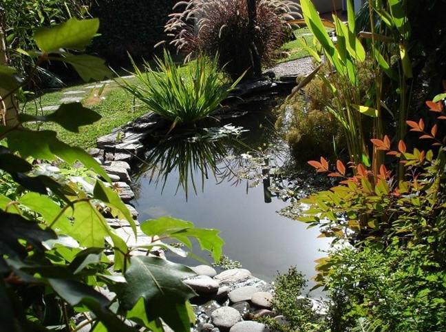 Diy Small Garden Pond