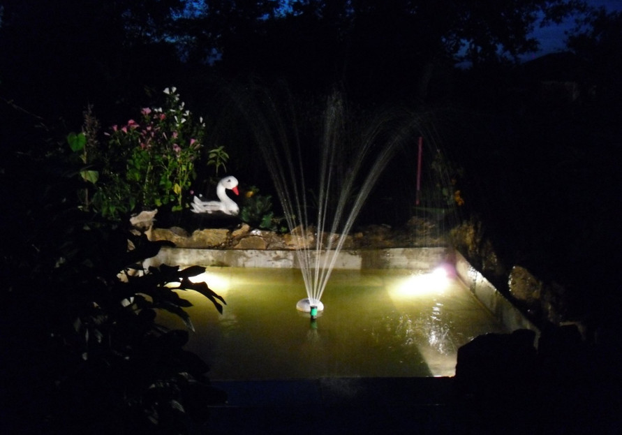 Fish Pond Fountains Pool Design Ideas: pond with fountain