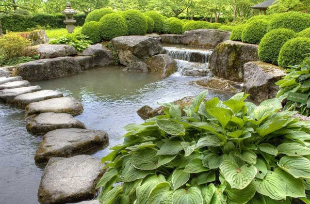 Garden Fish Ponds Designs