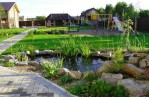 Garden Pond Design Pictures