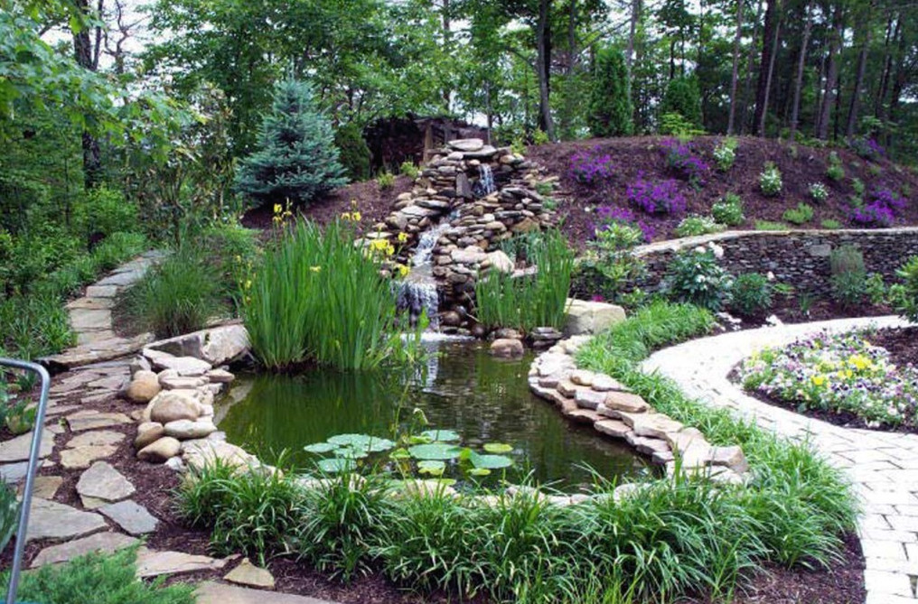Garden pond waterfall ideas pool design ideas for Plantas para estanque exterior