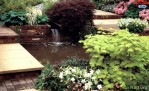 Garden Pond Waterfall Pictures