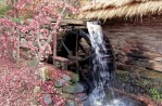 Garden Water Features Ideas