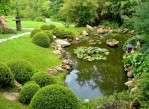How to Landscape a Pond