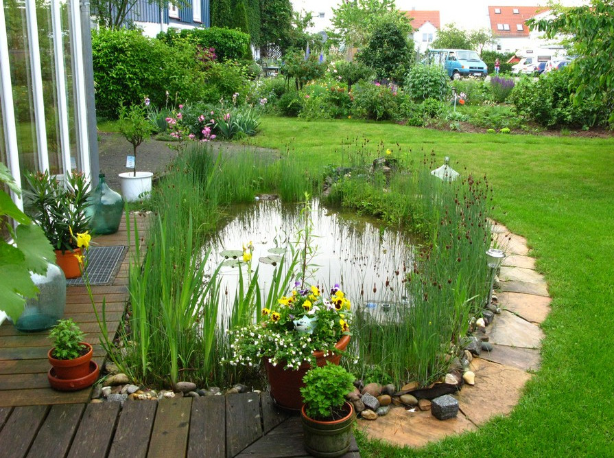 How to make a small fish pond pool design ideas for Small yard ponds
