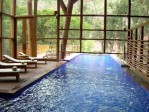 Indoor or Outdoor Pool