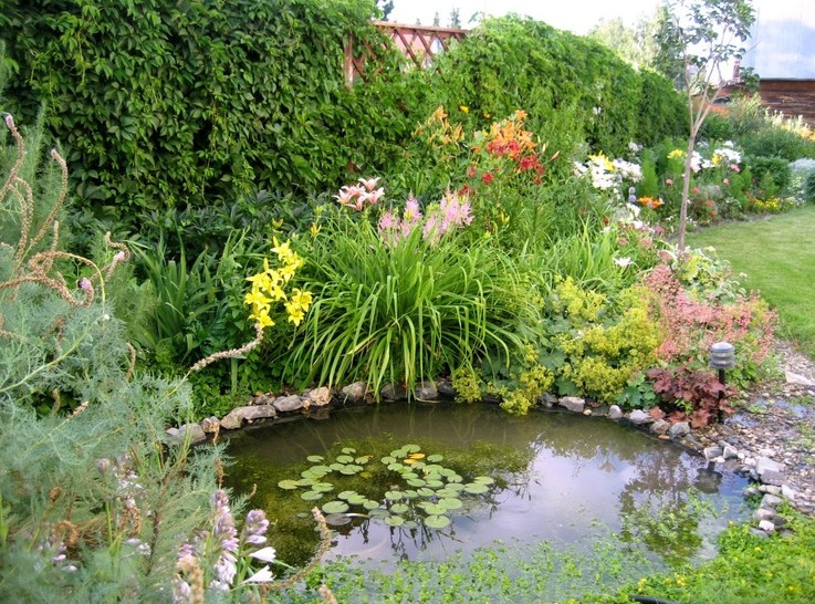 Landscaping Ponds Ideas