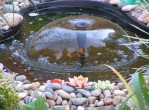 Landscaping Water Features Pictures
