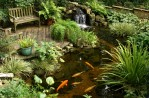 Landscaping With Ponds and Waterfalls