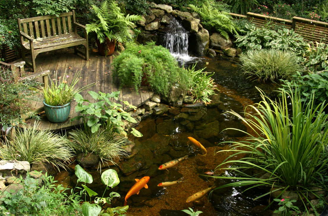 Landscaping with ponds and waterfalls pool design ideas for Garden design with pond and waterfall