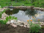 Large Pond Landscaping Ideas