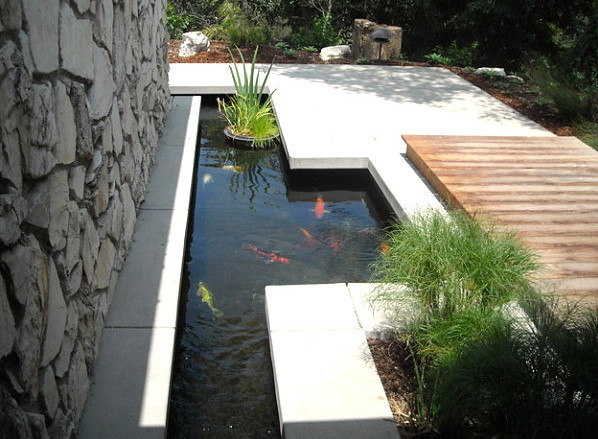 Modern Fish Pond Designs