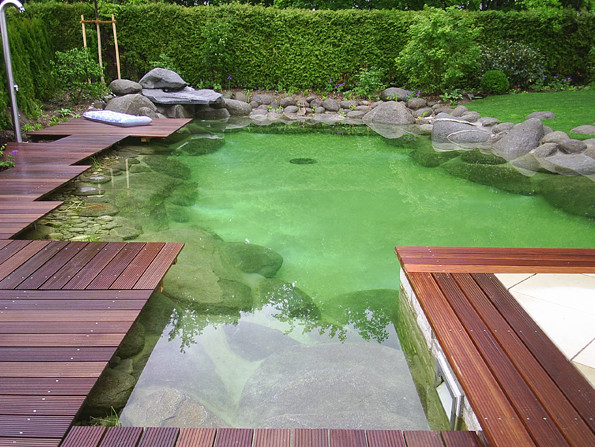 Modern koi pond ideas pool design ideas for Contemporary koi pond design