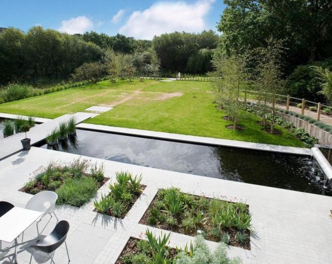 Modern Pond Design Ideas