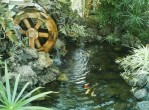 Pictures of Water Features for the Backyard