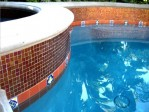 Pool Waterline Tile Pictures
