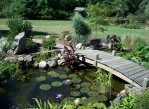 Small Backyard Fish Pond Ideas