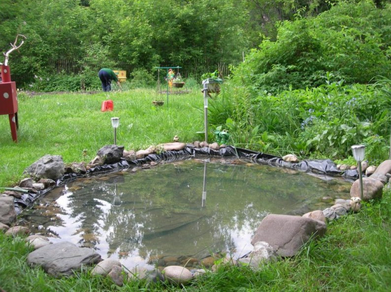 Small fish pond design ideas pool design ideas for Fish pond ideas