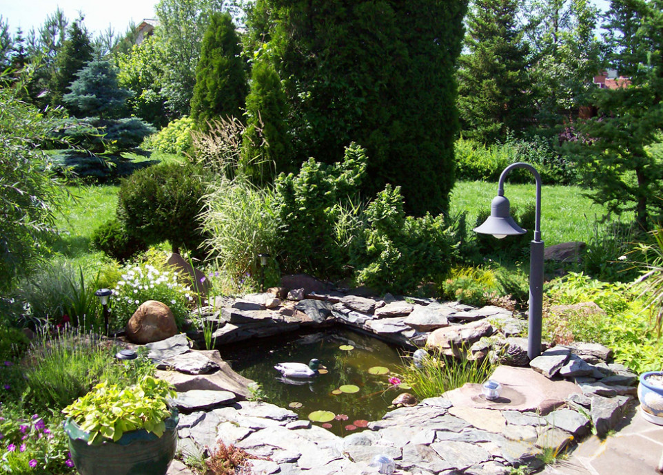 Small pond landscaping ideas pool design ideas for Fish pond landscape ideas