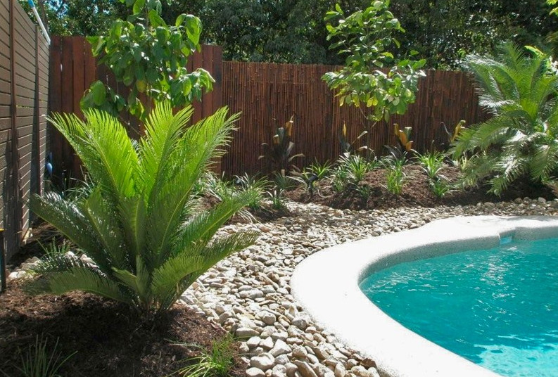 Swimming Pools Pictures in Ground