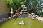 Backyard Fountains and Ponds