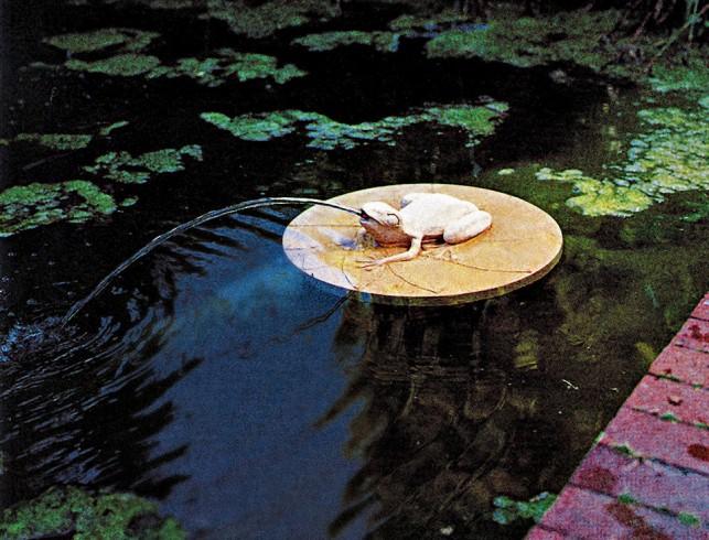 Backyard Water Features Diy