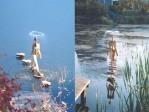Diy Outdoor Fountain Ideas
