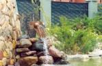 Garden Fountains Outdoor
