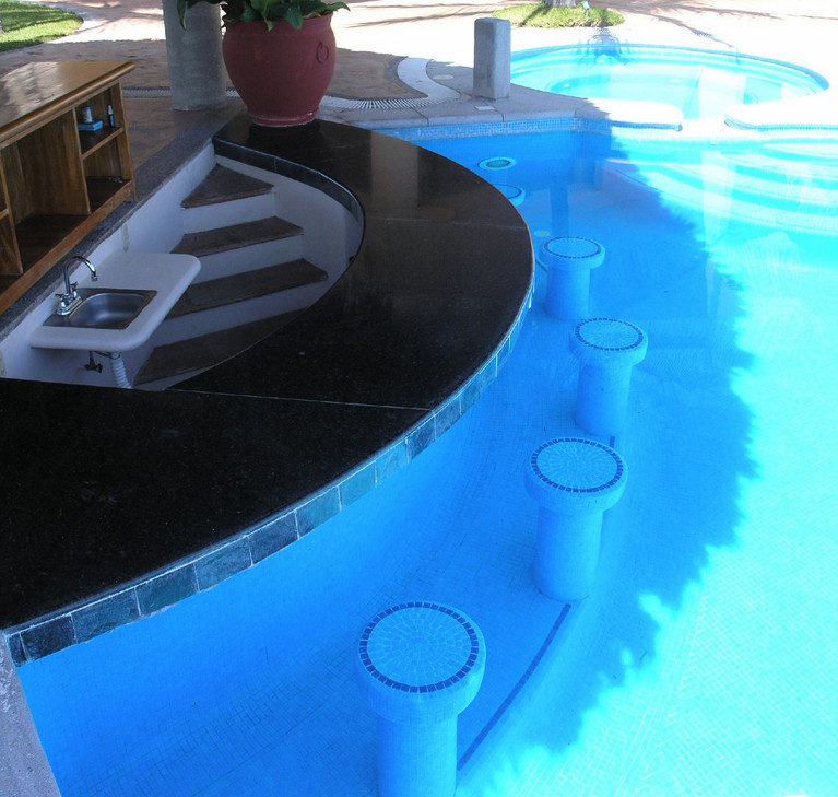 pool with swim up bar