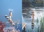 Small Backyard Fountain Ideas