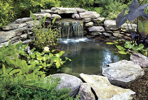 Small pond ideas with waterfall pool design ideas for Garden pond waterfall ideas