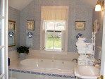 Bathtub Shower Combo Ideas