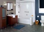Shower and Bathtub Combo